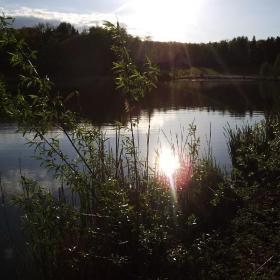 Rybník Bažantník